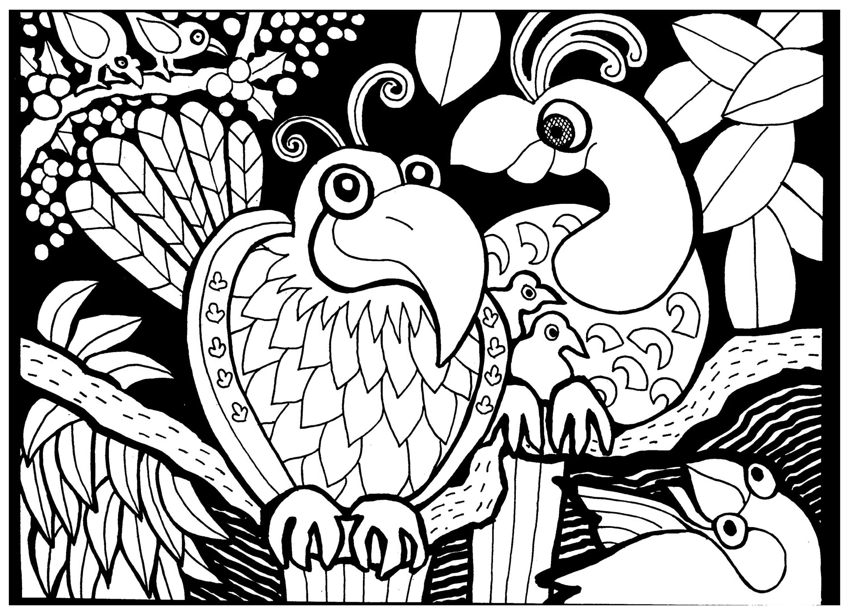 Papagei - Malbuch Fur Erwachsene