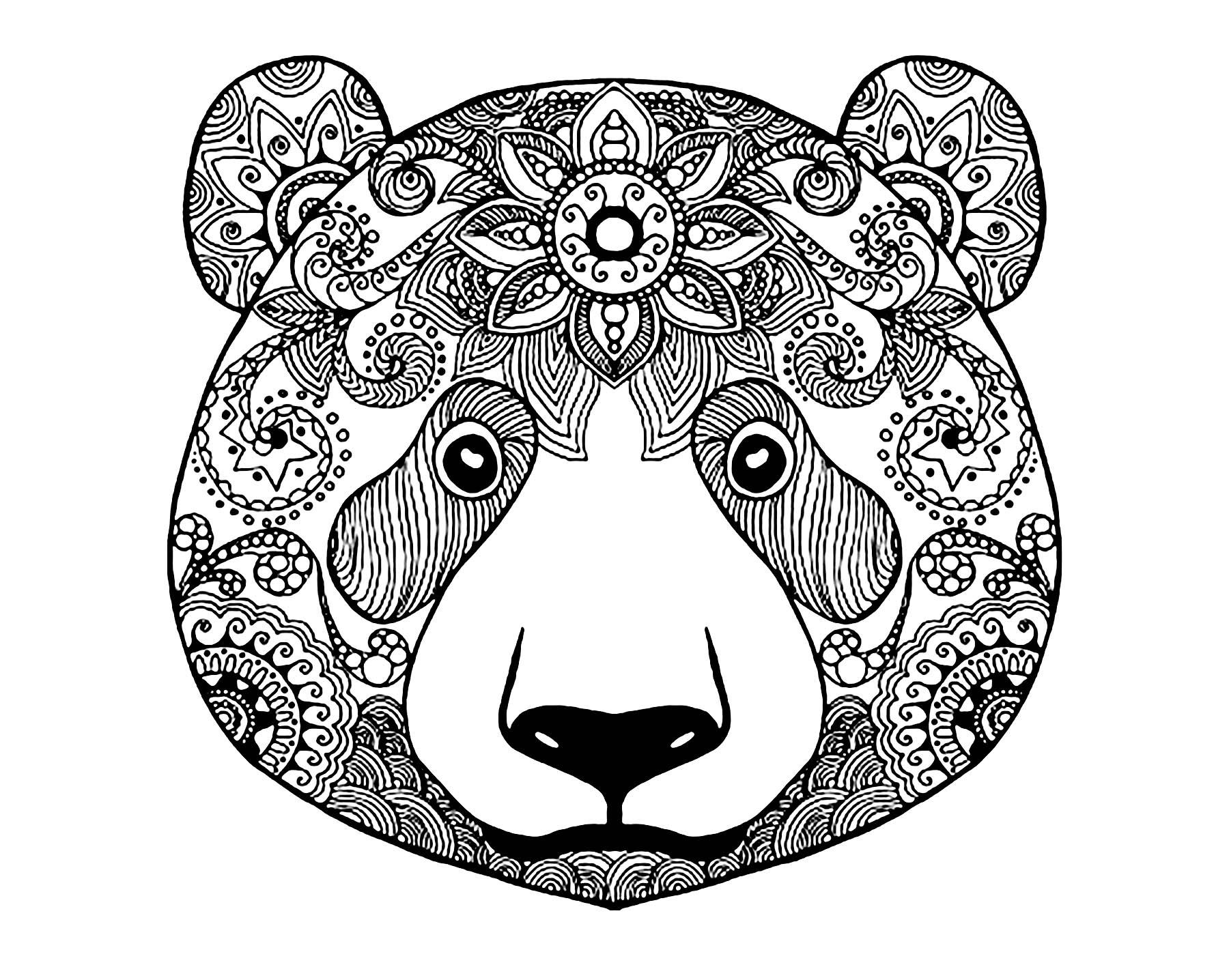 Malbuch Fur Erwachsene  : Bären - 2