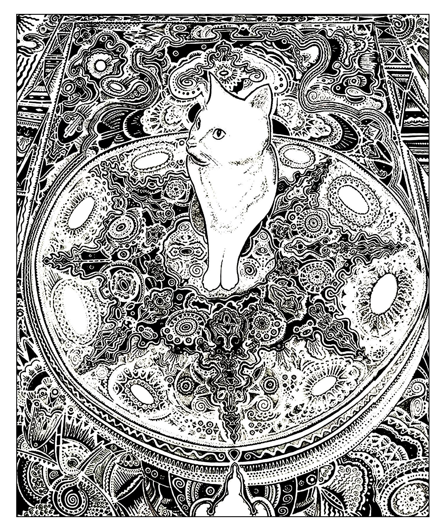 Malbuch Fur Erwachsene  : Katzen - 20