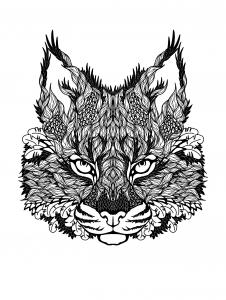 Katzen 18614