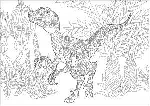 Dinosaurier 62526