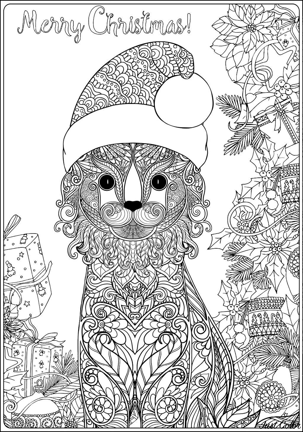 Malbuch Fur Erwachsene : Weihnachten - 3