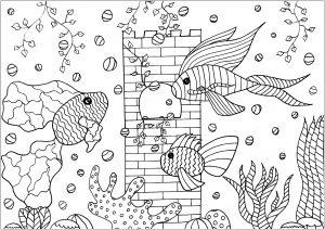 Fische 43967