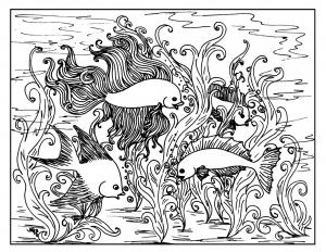 Fische 5059