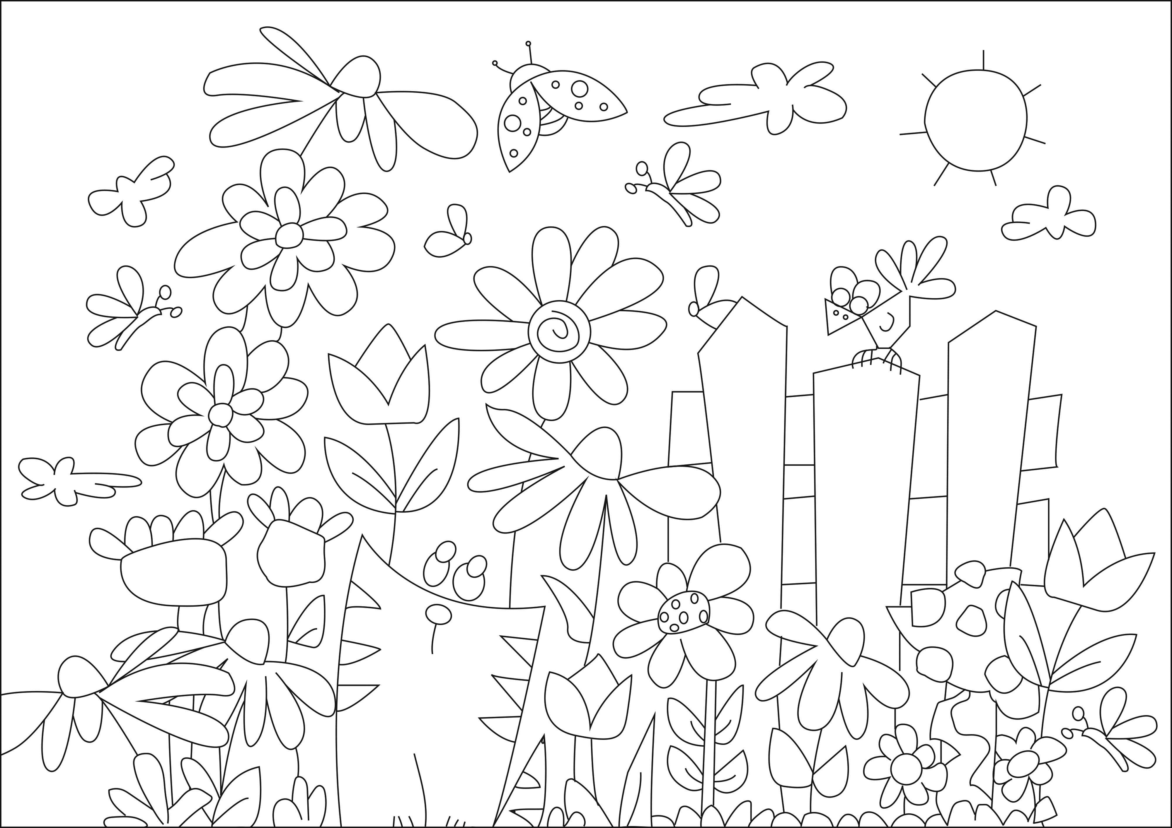 Sonnenblume - Malbuch Fur Erwachsene