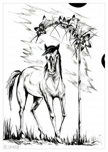 Pferde 84008