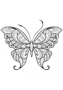 Insekten 79303