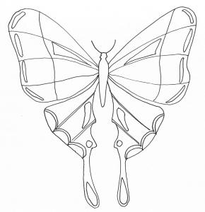 Insekten 86417