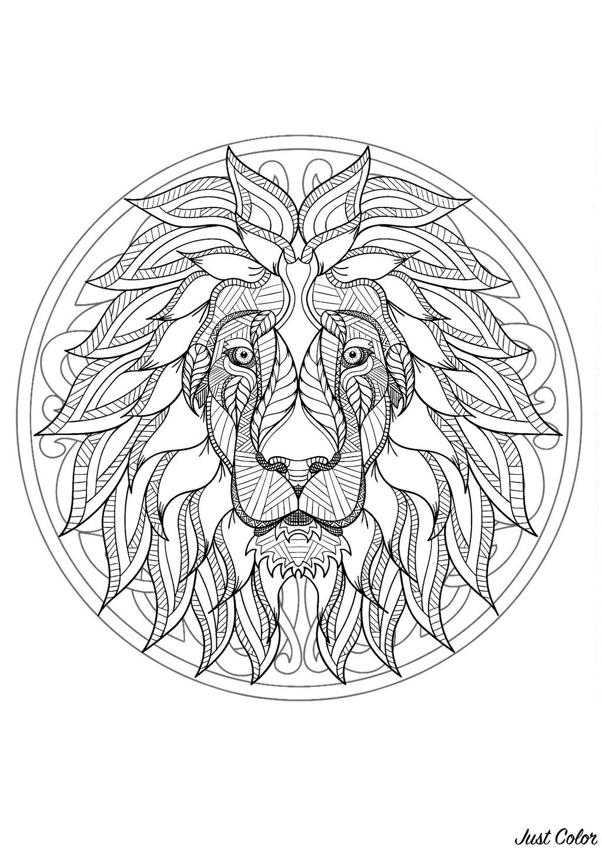 Malbuch Fur Erwachsene  : Mandalas - 4