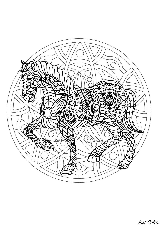 Malbuch Fur Erwachsene  : Mandalas - 17