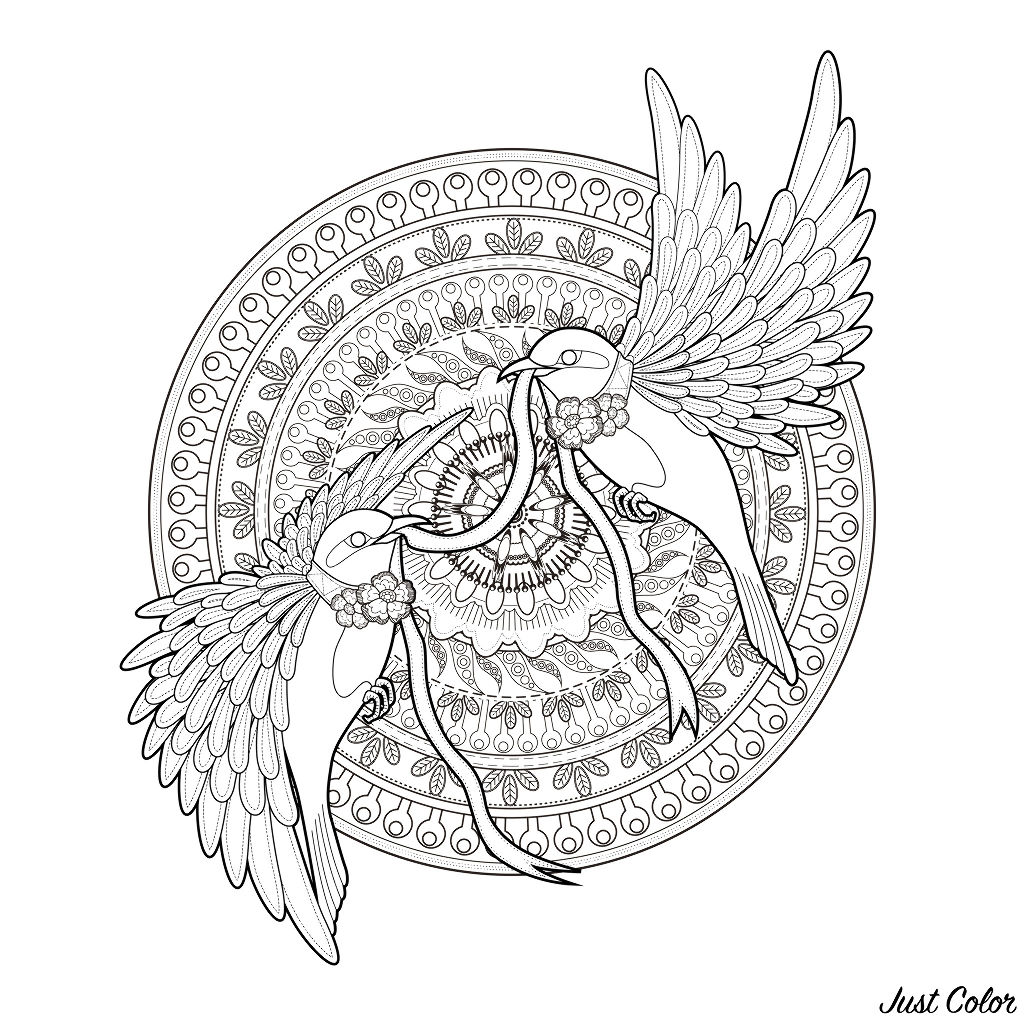 Malbuch Fur Erwachsene  : Mandalas - 83