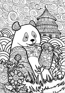 Panda 57237