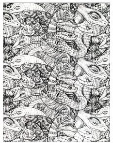 Schlangen 16396