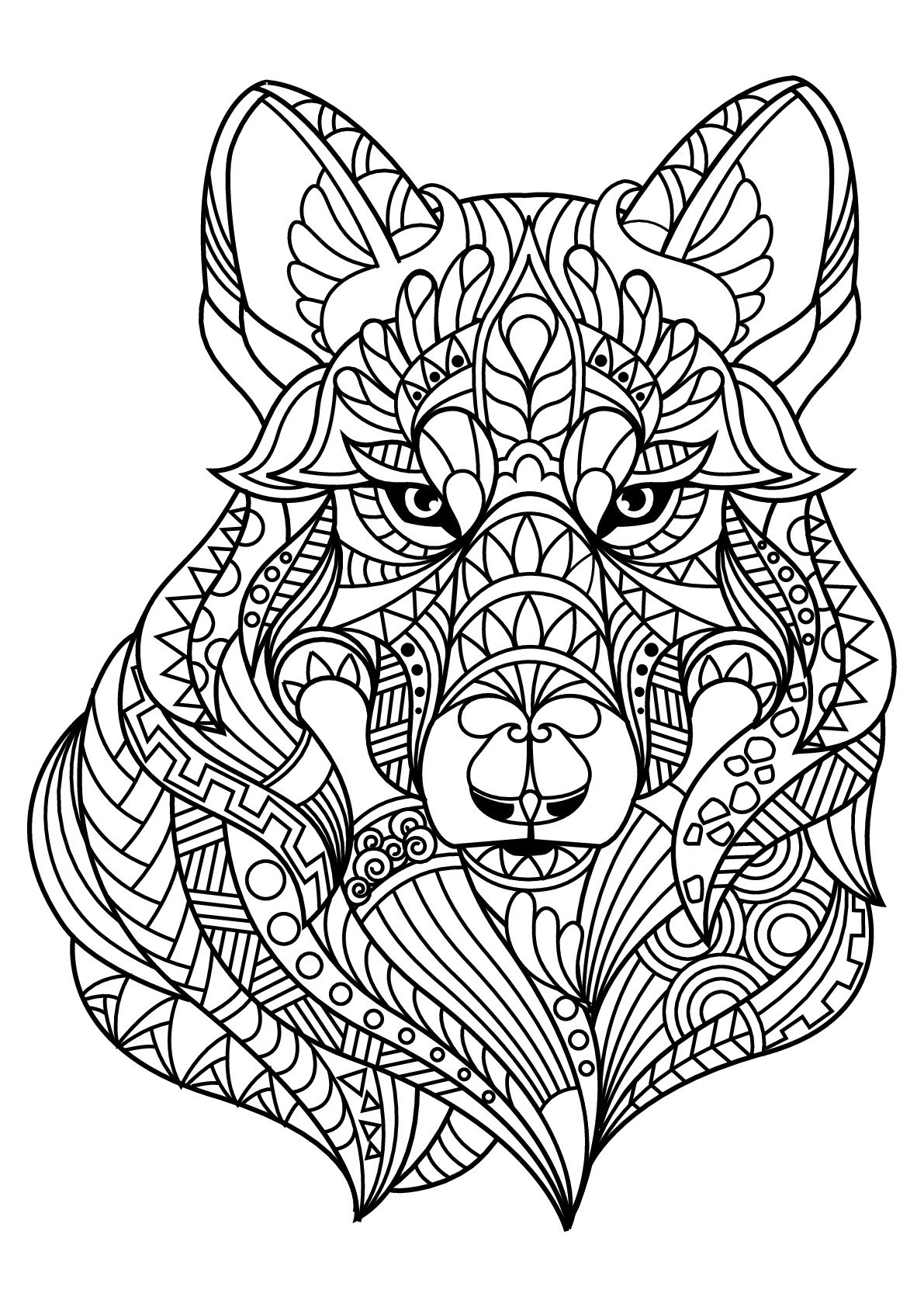 Malbuch Fur Erwachsene  : Wölfe - 2