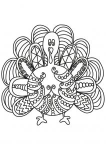 Aves 21001
