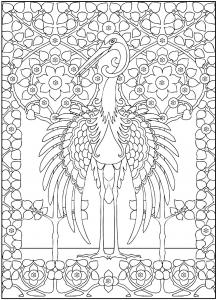 Aves 44167