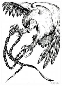 Aves 72696
