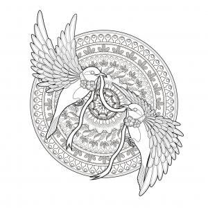 Aves 8283