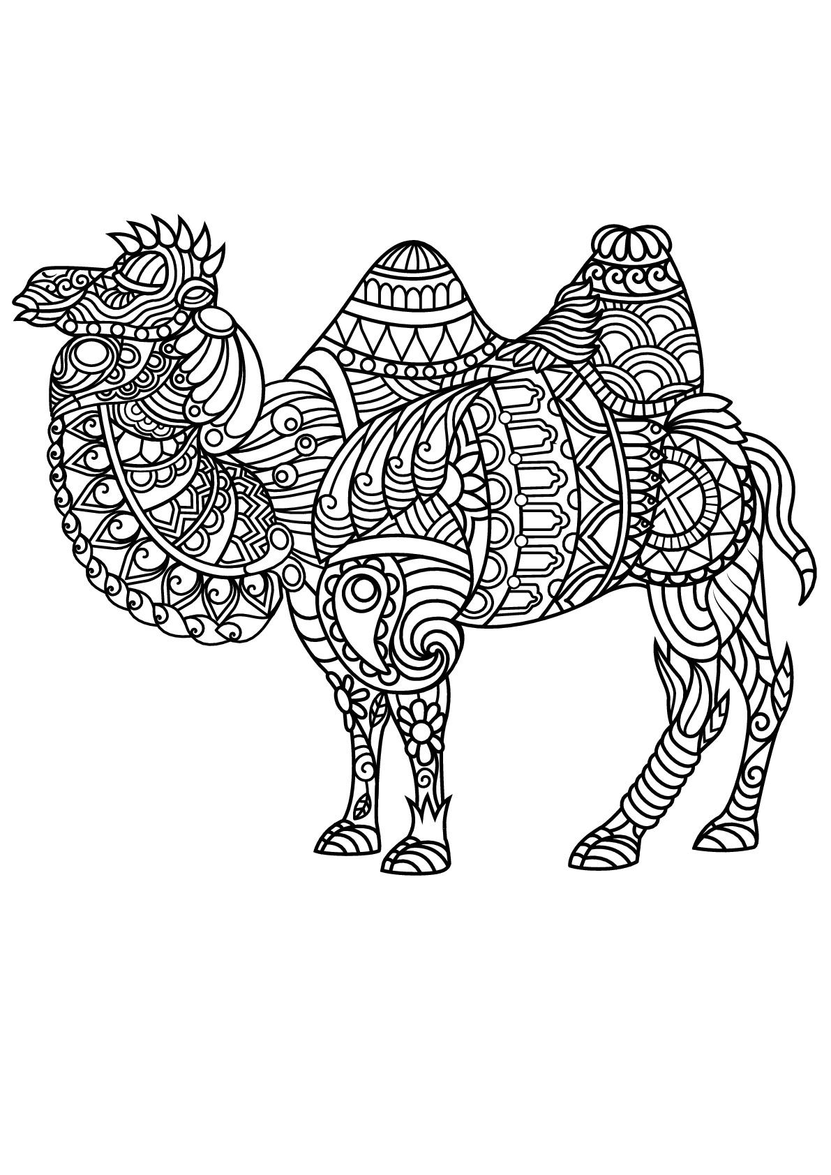 Colorear para adultos : Camellos - 1