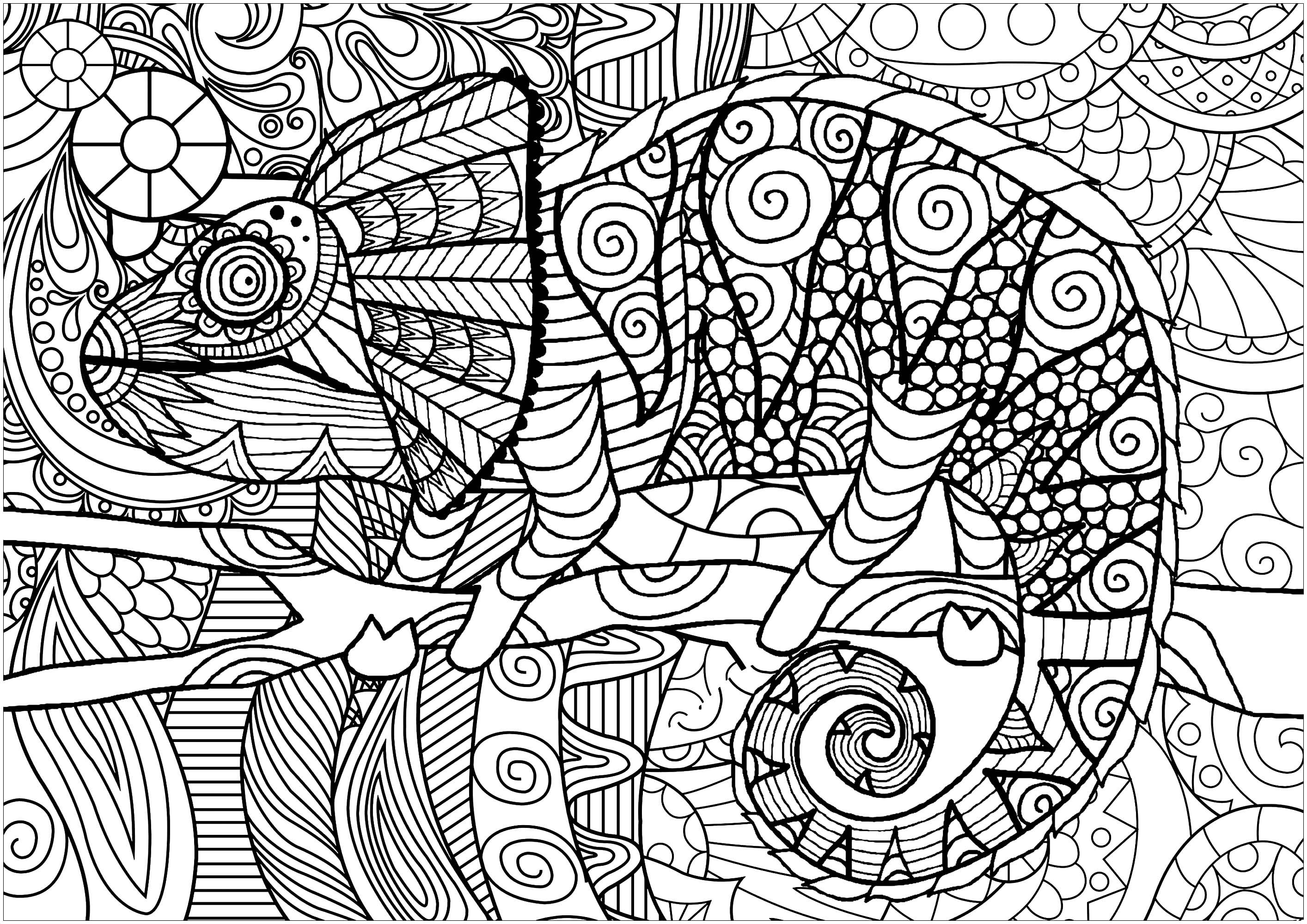 Colorear para Adultos : Camaleones Y Lagartos - 1