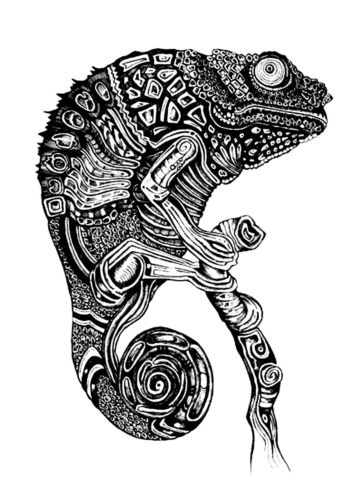 Colorear para adultos  : Camaleones Y Lagartos - 5