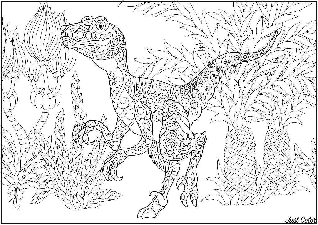 Colorear para Adultos : Dinosaurios - 2