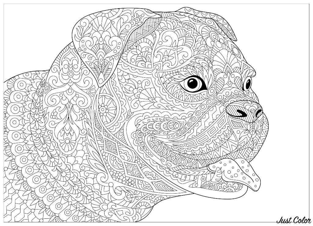 Colorear para adultos  : Perros - 2