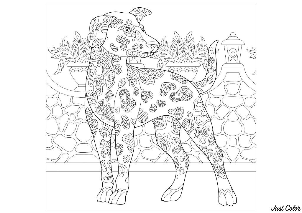 Colorear para Adultos : Perros - 1