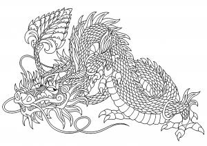 Dragones 29060