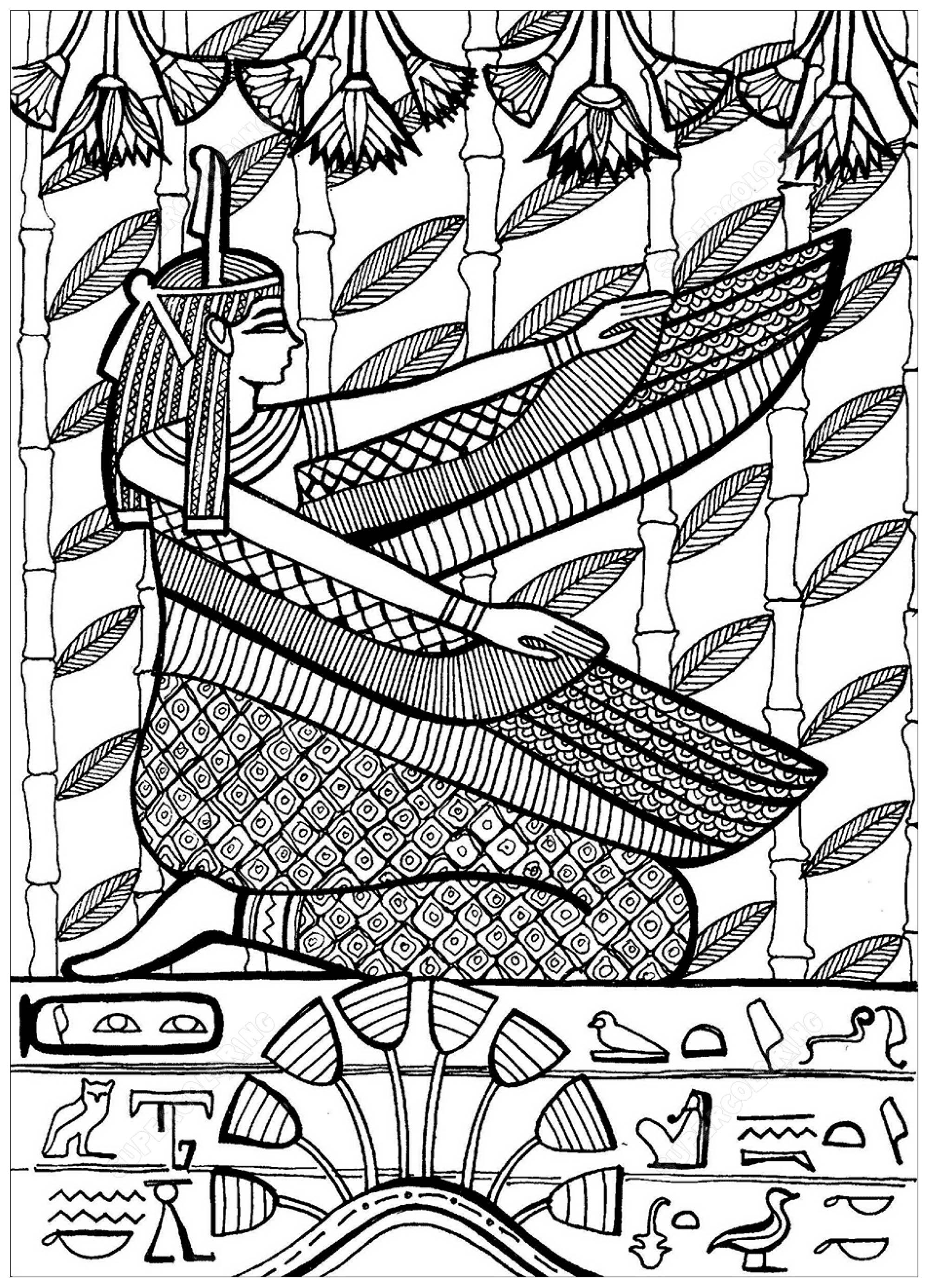 Colorear para adultos  : Egipto y Jeroglíficos - 6