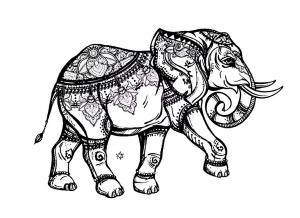 Elefantes 13128