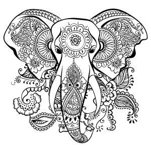 Elefantes 81704