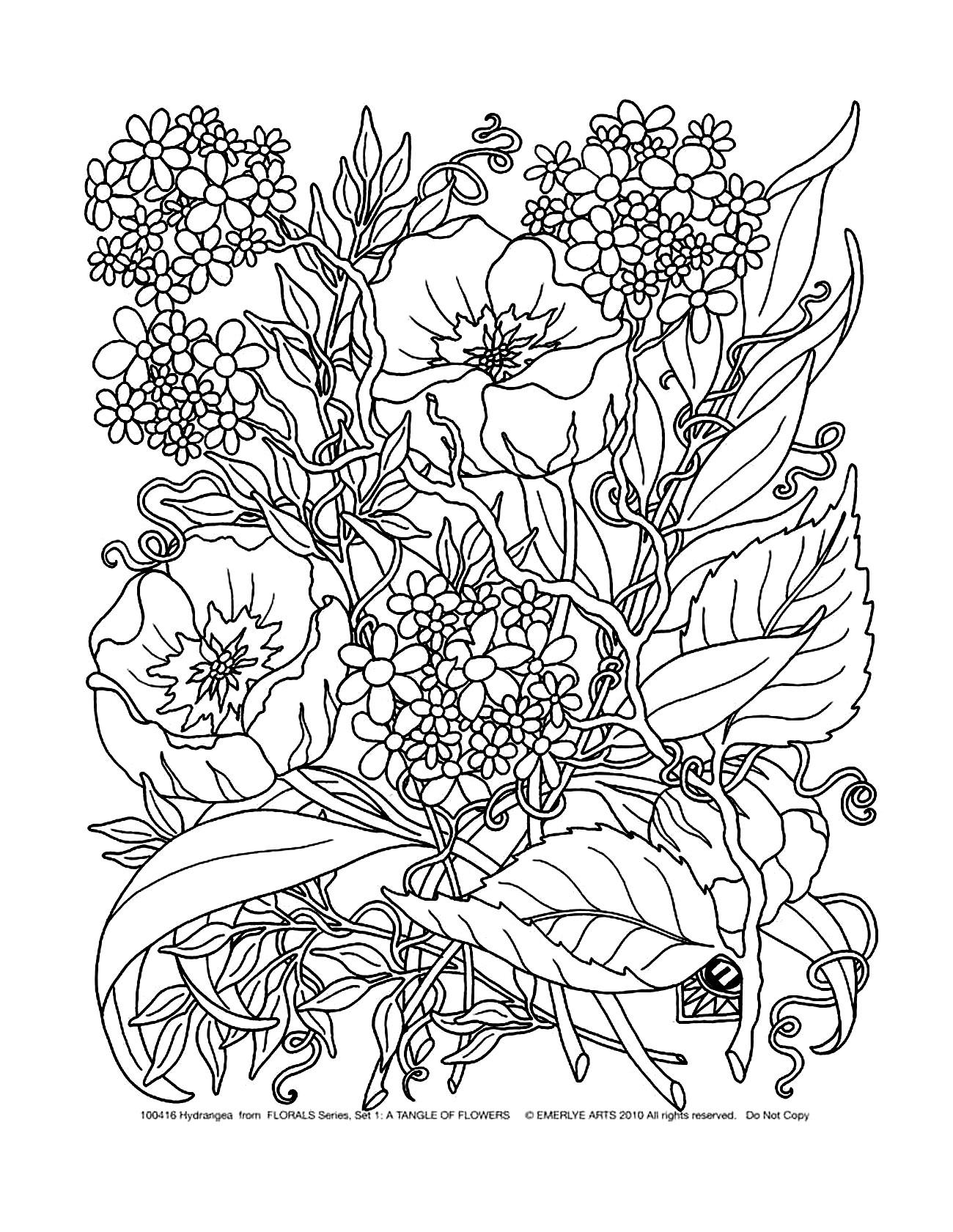 Colorear para adultos : Flores y vegetación - 29