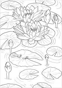Flores y vegetacion 5880