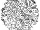 Flores y vegetacion 78982