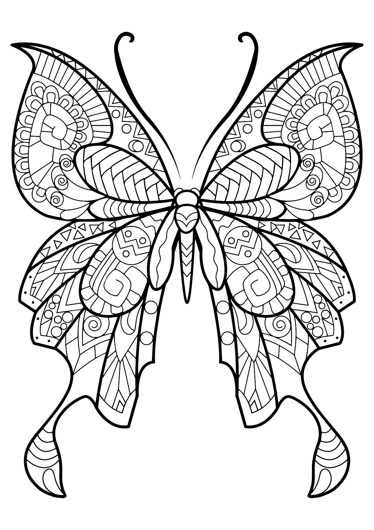 Insectos 93133 - Mariposas e insectos - Colorear para adultos