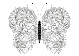 Mariposas e insectos 47108