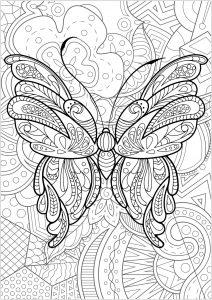 Mariposas e insectos 69369