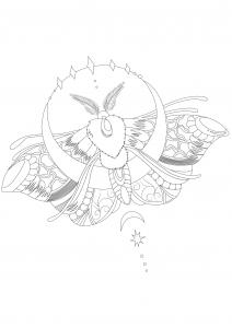 Mariposas e insectos 88496