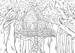 Selva y bosque 45610