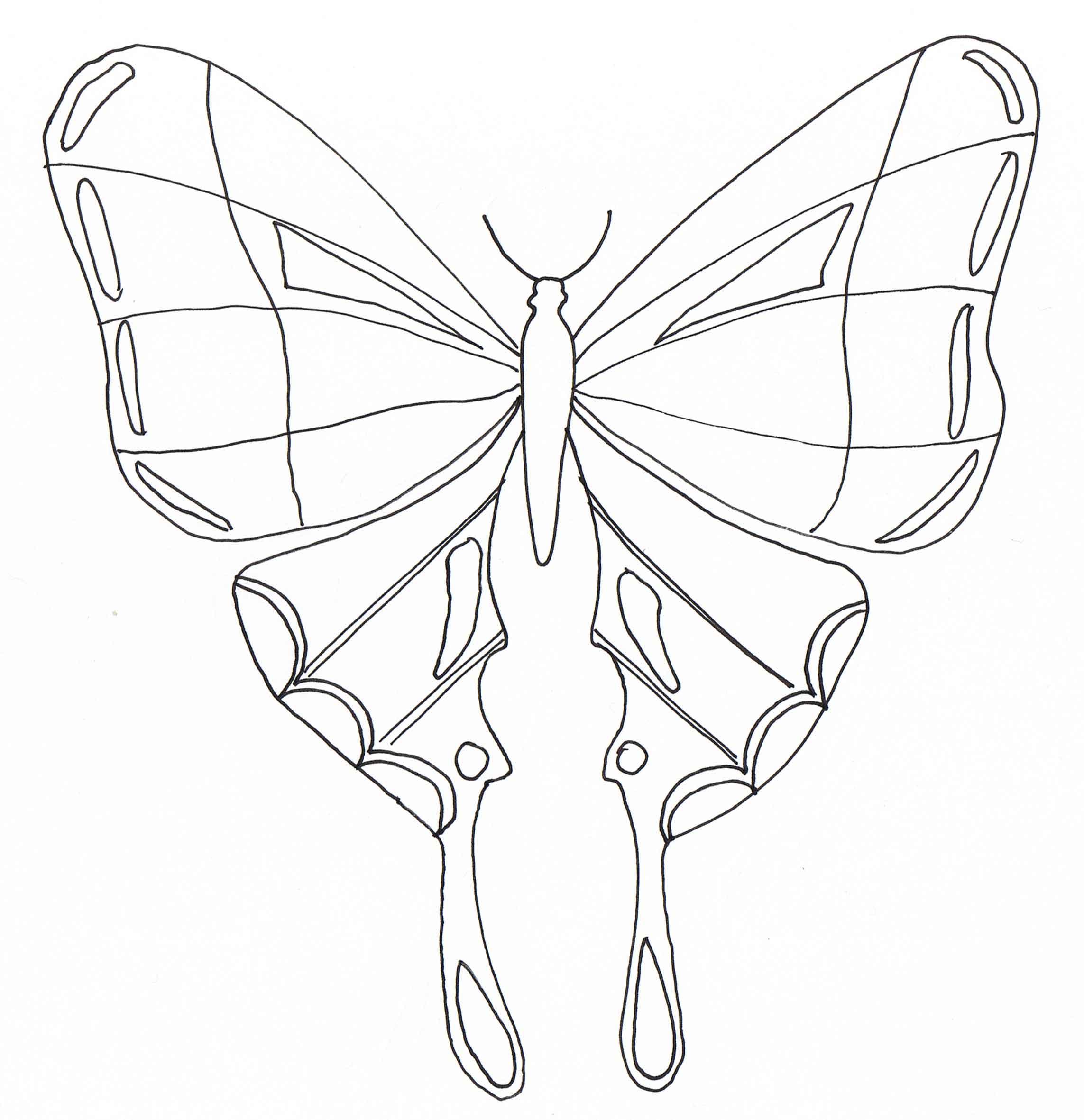 Insectos 51168 - Insectos - Colorear para Adultos