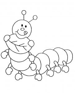 Insectos 56620