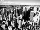 New york 31617