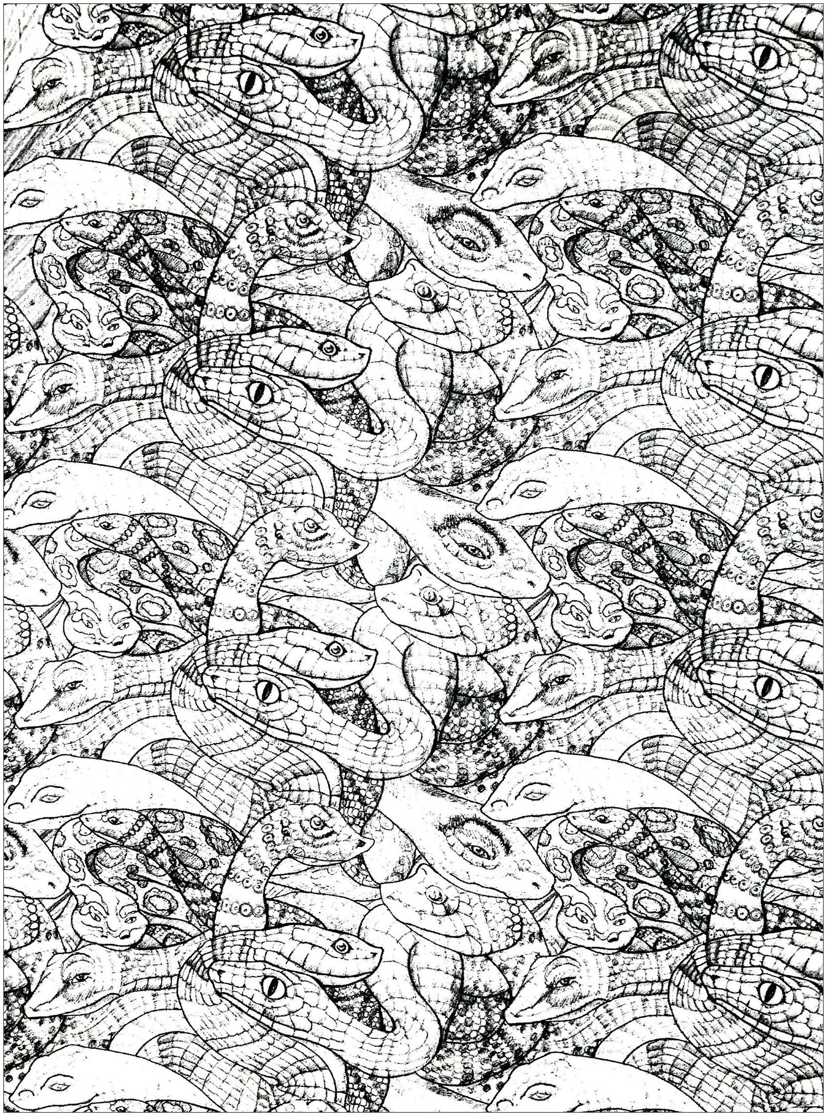 Colorear para adultos  : Serpientes - 3