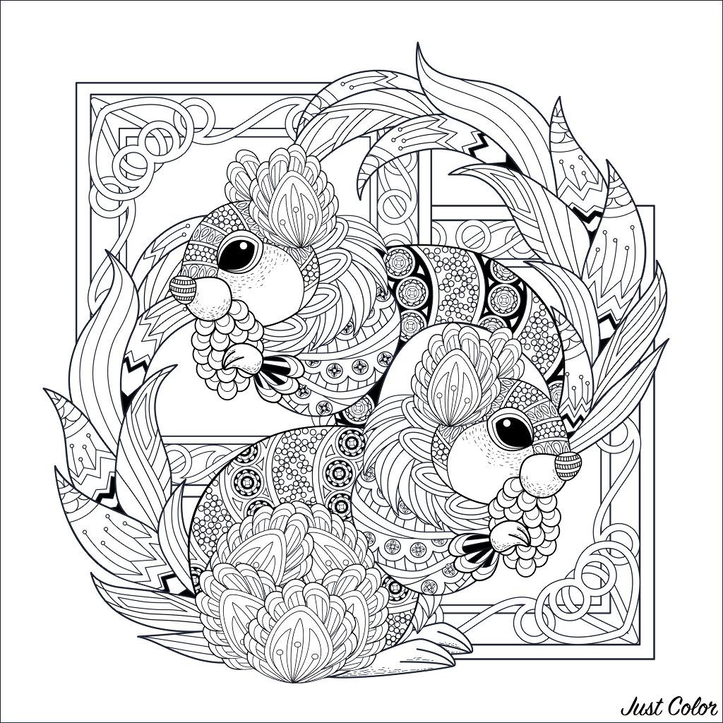 Colorear para Adultos : Ardillas Y Marmotas - 1