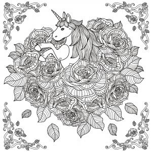 Unicorni 17547