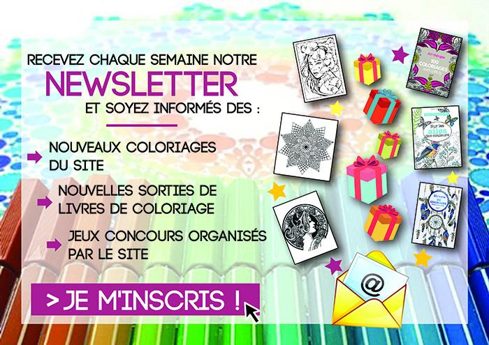 Newsletter FR 700