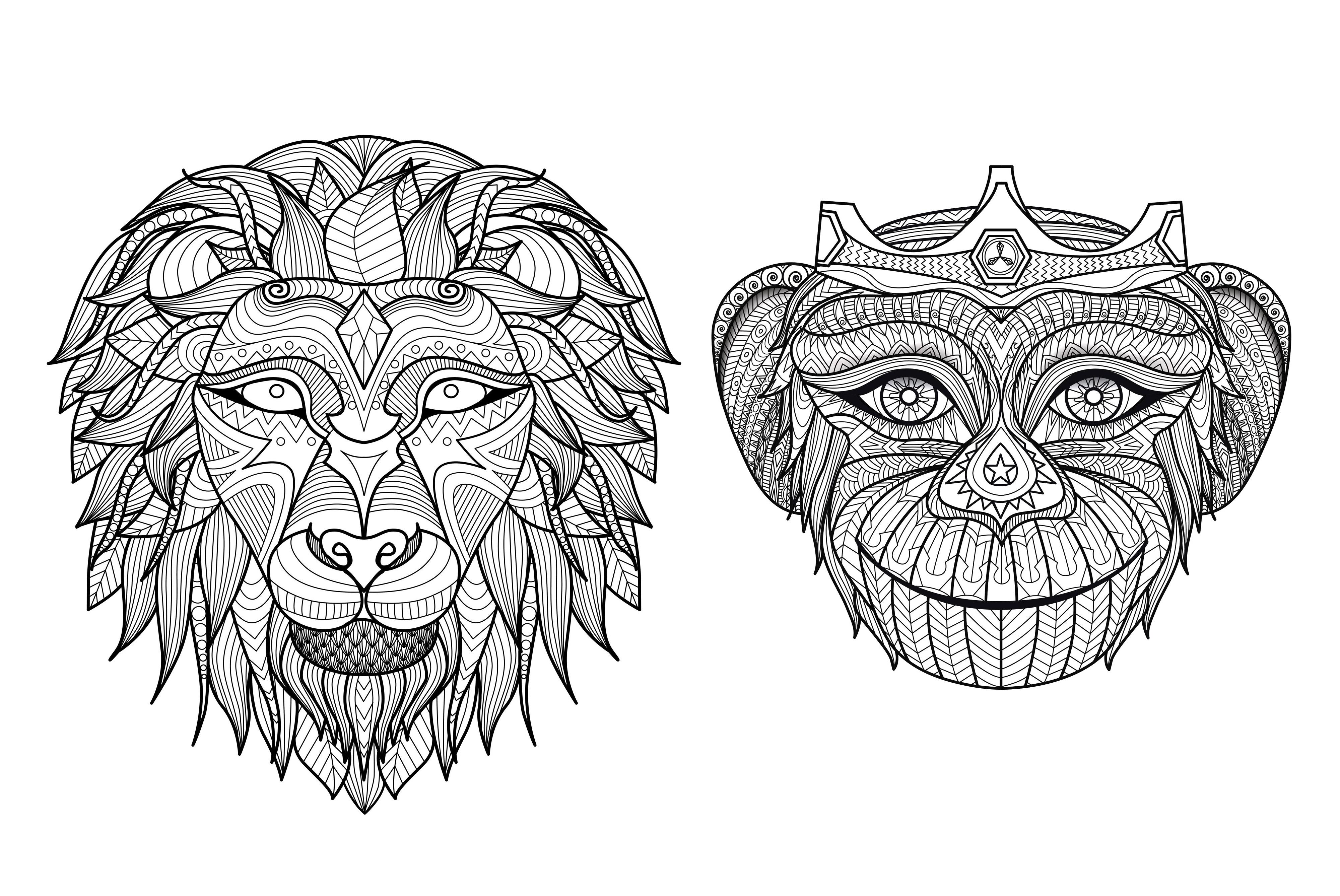 Afrique tetes singe lion   A partir de la galerie : Afrique