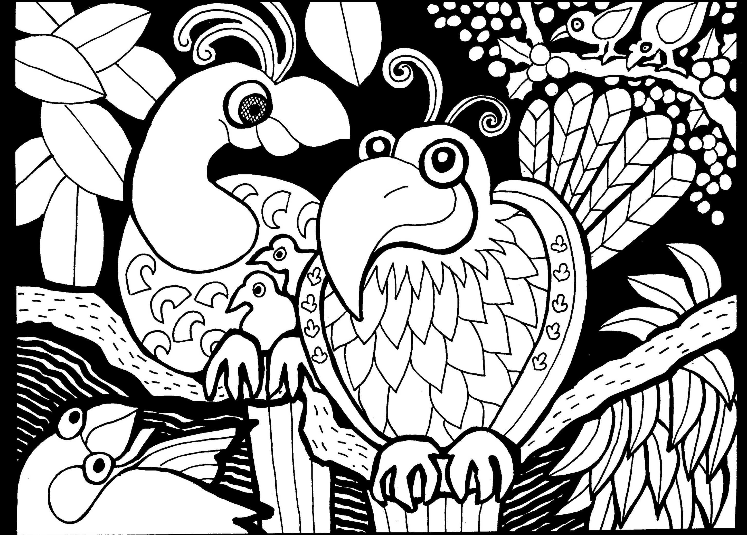 Afrique dessin oiseaux afrique coloriages difficiles pour adultes - Coloriage afrique a imprimer ...