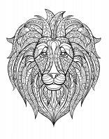 coloriage-adulte-afrique-tete-lion free to print